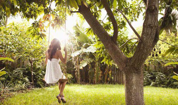 Alan-Titchmarsh-planting-garden-tree-UploadExpress-628249